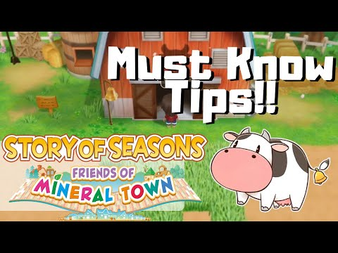 Story of Seasons: Friends of Mineral Town TIPS +  BEGINNER GUIDE