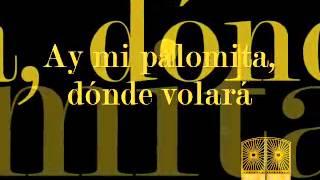 Dúo Aguayo Guayamabe Palomita Errante Pasacalle Pista Karaoke