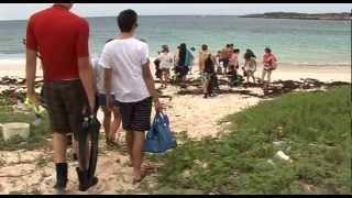 Biosciences Bahamas Field Trip