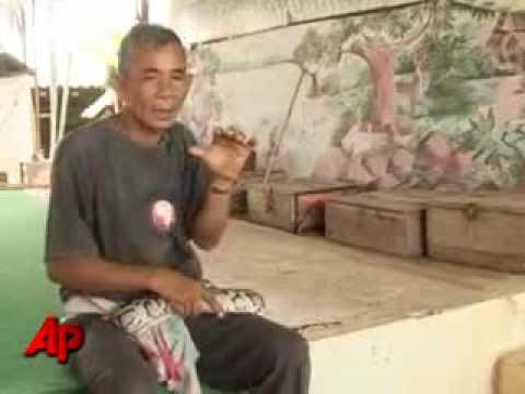 damdocvoco - Đấm bốc với rắn hổ mang