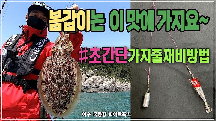 갑오징어 낚시 필드에서 사용하는 채비방법 갑오징어 입질파악 cuttlefish コウイカ fishing 갑오징어
