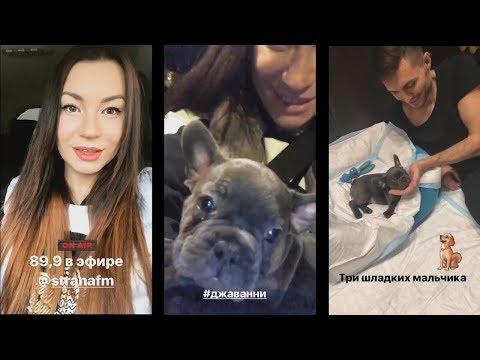 Ида Галич на радио СтранаФм.Купила собаку.Придумывают сценарий