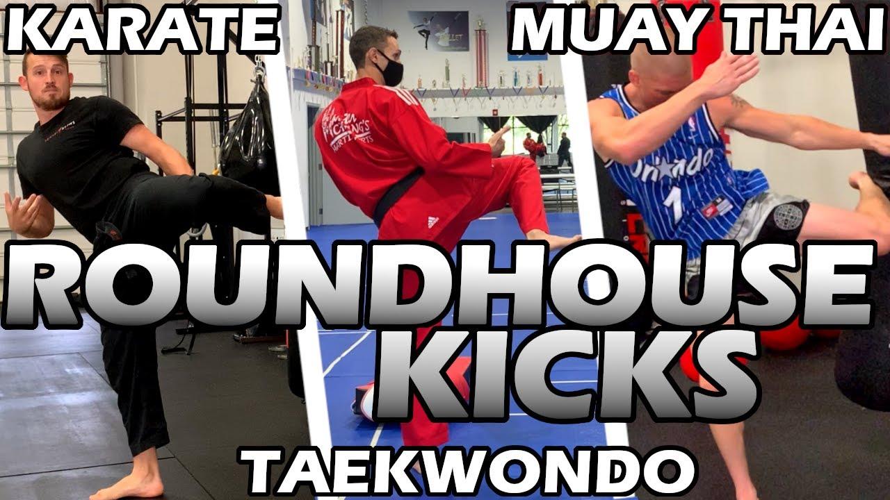 How Different Martial Arts ROUNDHOUSE KICK | Muay Thai / Taekwondo / Karate