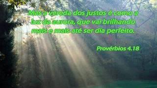Elias Silva - Folha ao Vento - IPDA