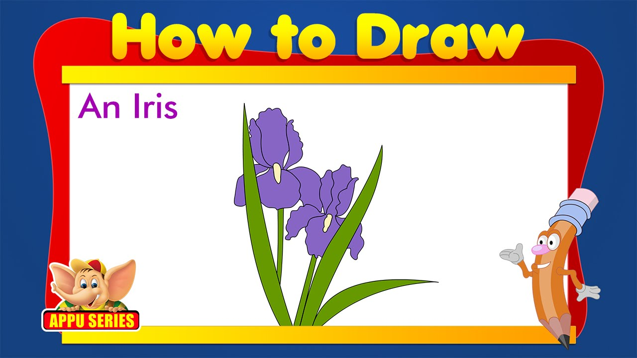 Learn to draw flower draw an iris youtube learn to draw flower draw an iris izmirmasajfo