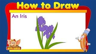 Learn to Draw Flower - Draw an Iris