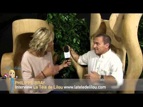 L'énergie de l'arbre et sa sagesse  - Philippe Bray