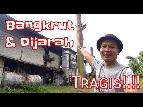 """""""BANGKRUT & DIJARAH"""" Nasib Tragis Pabrik Sawit Tertua di Manokwari, (PV 130)"""