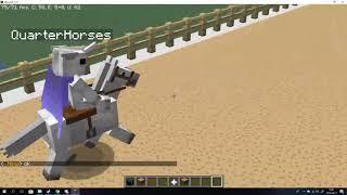 Minecraft Horse Racing