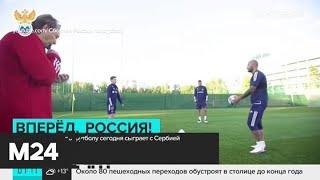 Сборные России и Сербии по футболу сыграют в Москве Москва 24