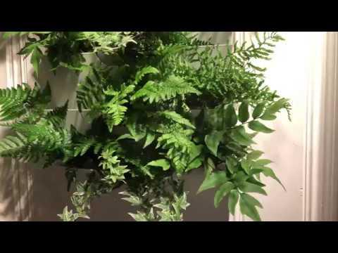 Växtvägg gör en levande grön vägg på några minuter Vertikalodling