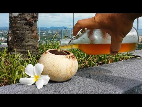 COCONUT WINE how to make at home