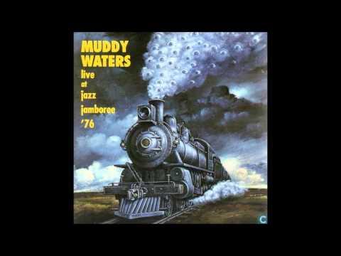 Muddy Waters - Live At Jazz Jamboree '76