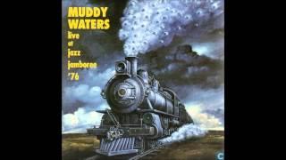 Muddy Waters - Live At Jazz Jamboree '76 Video