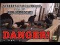 GHB Overdoses Diamond Club 11 17 1996  B529