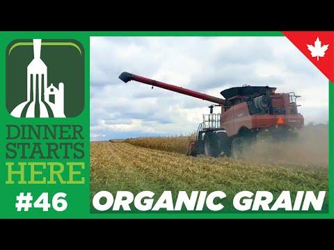 Organic Grain Farming - Dinner Starts Here (Farm 46)