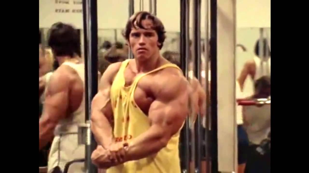Arnold schwarzenegger and the rock bodybuilding motivation 2013 hd arnold schwarzenegger and the rock bodybuilding motivation 2013 hd voltagebd Images