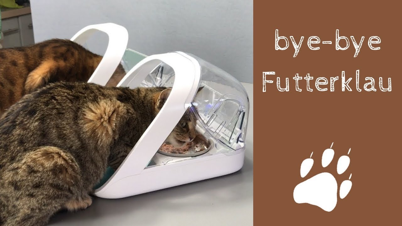 trixie futterautomat tx2 prima. Black Bedroom Furniture Sets. Home Design Ideas