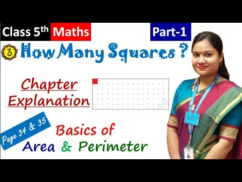 HOW MANY SQUARES ? (Part-1) / NCERT Class 5 Maths Chapter 3 Explanation in Hindi + English