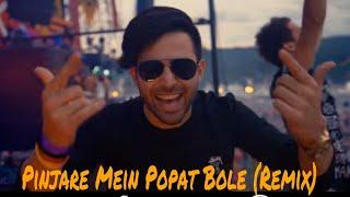 Pinjare Mein Popat Bole Dj Remix Song