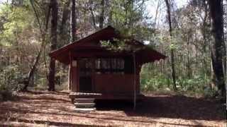 Iron Bridge Shelter At Etoniah Creek State Forest