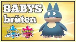 Babys/Eier brüten (Mampfaxo, Pantimimi, Mobai, Isso, Knospi + Mantirps) Pokemon Schwert + Schild