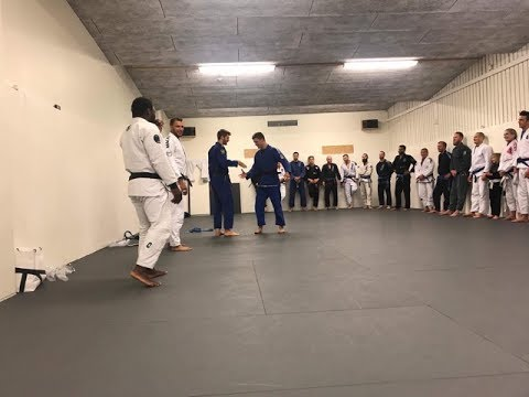 How Bjj instructors decide which students graduate to the next belt level