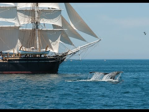 Voyaging in the Wake of Whalers: Behind the Scenes of Maritime History at Mystic Seaport