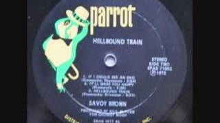 SAVOY BROWN- Troubled By These Days & Times ( Video, by Tony D).wmv