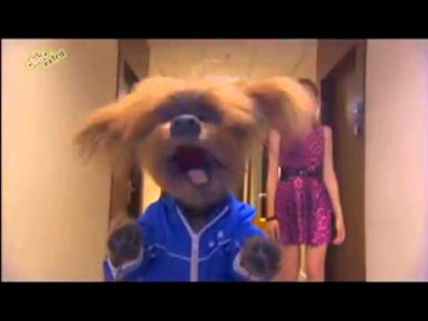 Dodge The Dog Cbbc Youtube