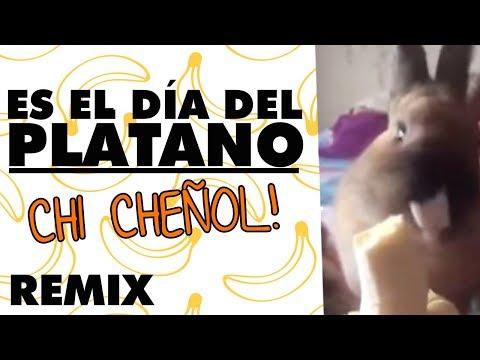 ♪ ES EL DÍA DEL PLÁTANO! ♪ - Remix! 鯉 :3