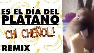 -es-el-da-del-pltano-remix-3