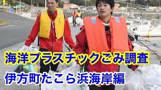 <愛媛県議会議員 西原司>海洋プラスチックごみ調査 東浦(たこら)浜