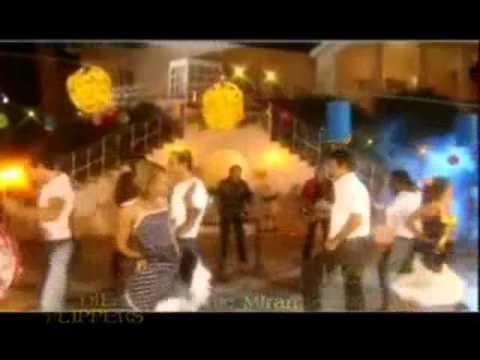 Die Flippers- Medley
