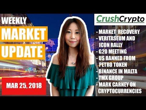 Weekly Update: Market Recovery / VERI & ICX Rally / G20 Meeting / Petro Token / Binance / TMX Group