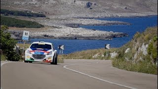 Rally del Salento 2017: Peugeot 208 T16 e Paolo Andreucci - Tappa 1