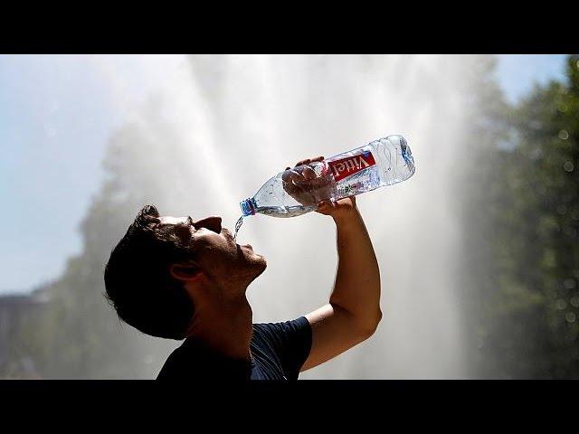 2016 г. – самый жаркий год в истории метеорологии