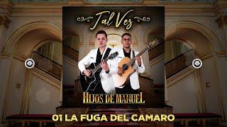 Los Hijos de Manuel - Tal Vez (Disco Completo)