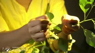 【心咲旅修】:2020 逃去鶯歌小房子・古法藥草療癒僻靜 An Ancient Herbal Healing Retreat