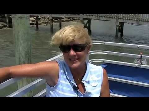 Marine Discovery Center, New Smyrna Beach, Florida