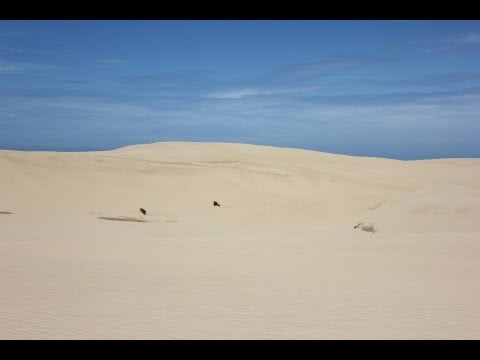 Formation of Sand Dunes: Coastal Processes Part 5 of 6