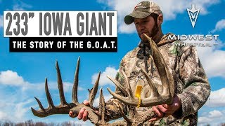 "233"" Giant Found Dead, How To Fertilize Plots 