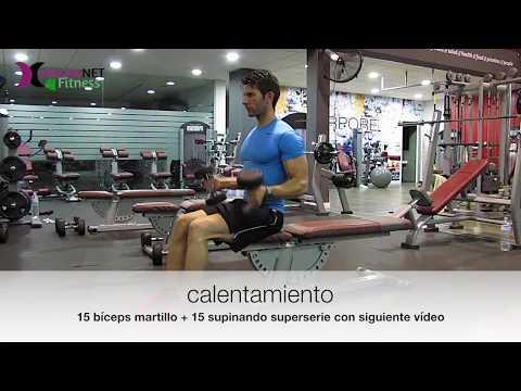 bíceps tríceps marcados fitness hipertrofia