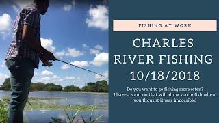 Charles River Fishing - 10/18/2018