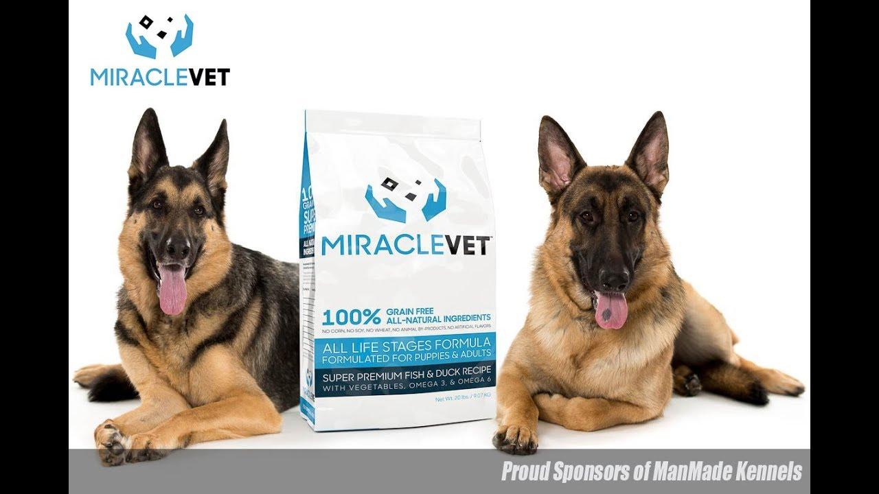 Best Dog Food 2018 Miracle Vet Best Brand Of Dog Food Sponsors Of