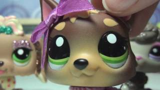 "Littlest Pet Shop: Kandy TV Episode #1 ""DUCK IN TOILET?!"" (Pilot)"