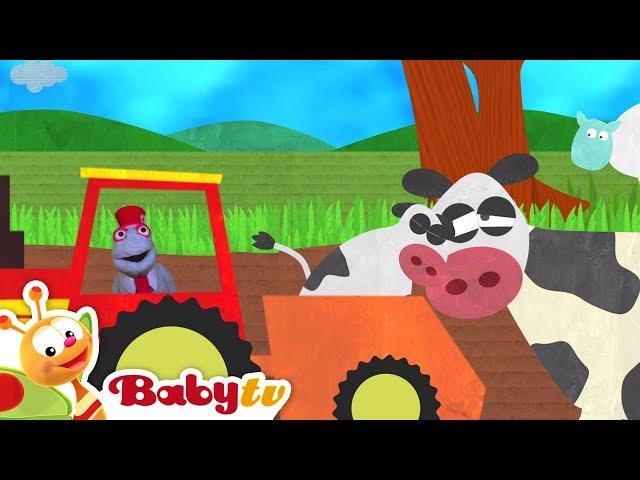 Food and Banana with Monkeys and Animals  | BabyTV