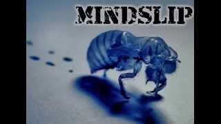 Mindslip- New Identity