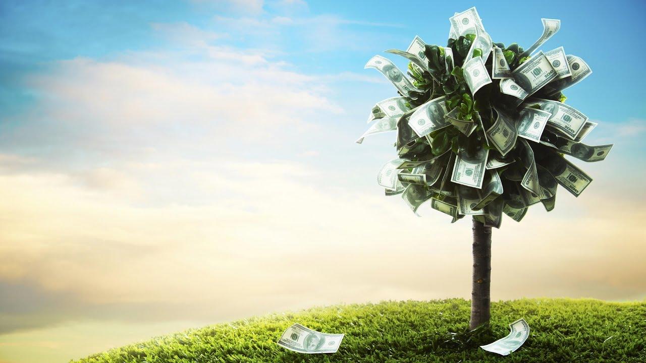 Стихи на свадьбу к подарку денежное дерево