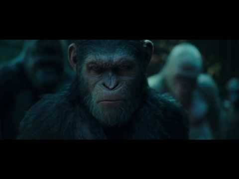Plakat Planeta małp